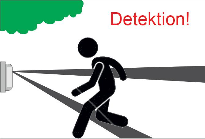 Bodendetektion Freigeländesicherung